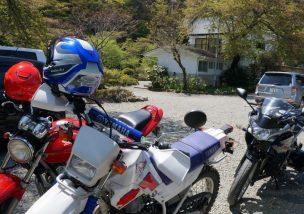 赤坂パラダイス釣り堀ツーに行ってきた